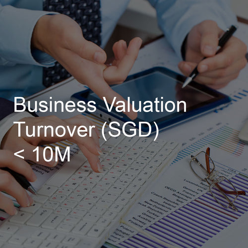 Business Valuation Service, Turnover <10M