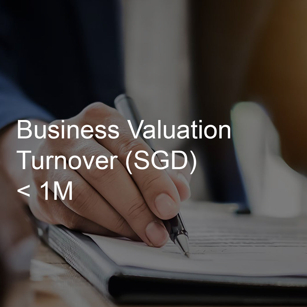 Business Valuation Service, Turnover <1M
