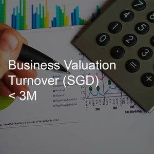 Business Valuation Service, Turnover <3M