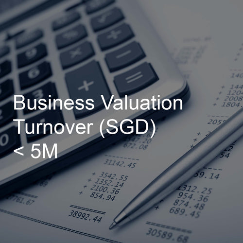 Business Valuation Service, Turnover <5M