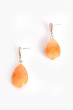 Metal Edge Resin Drop Earrings (Camel/Silver)