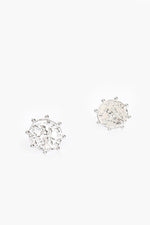 Roman Coin Stud Earrings (Silver)