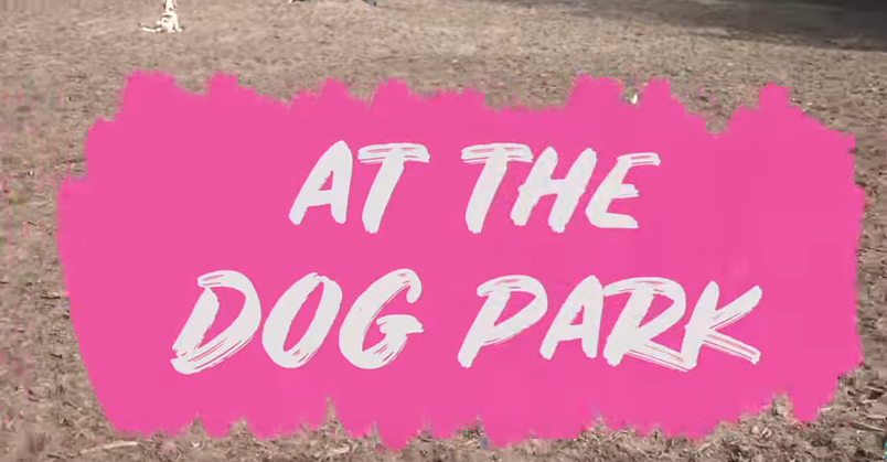 10 Do's and Don'ts at the Dog Park