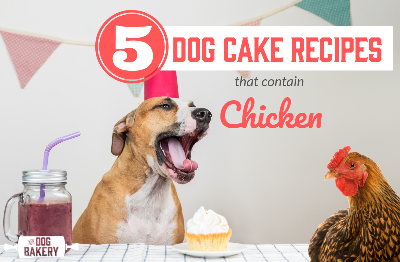 5 Dog Cake Recipes With Chicken