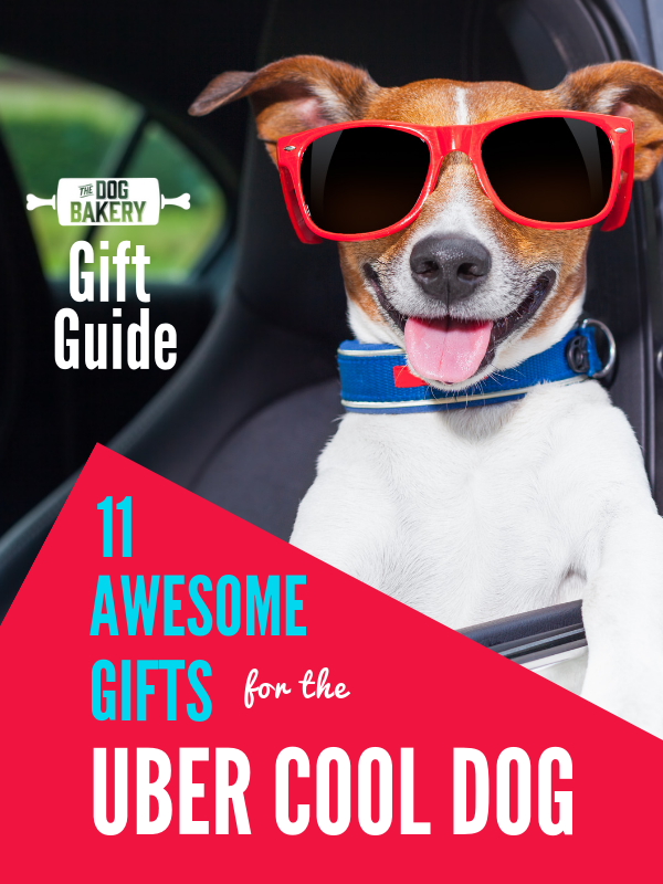 Gift Guide: 11 Awesome Gifts For Uber Cool Dogs.