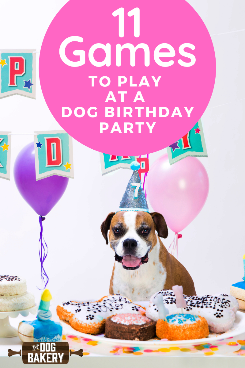 11 Doggie Birthday Party Game Ideas