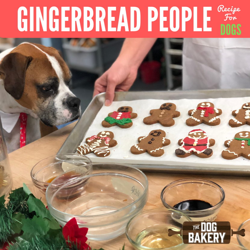 gingerbread people recipe for dogs making cookies for your dog