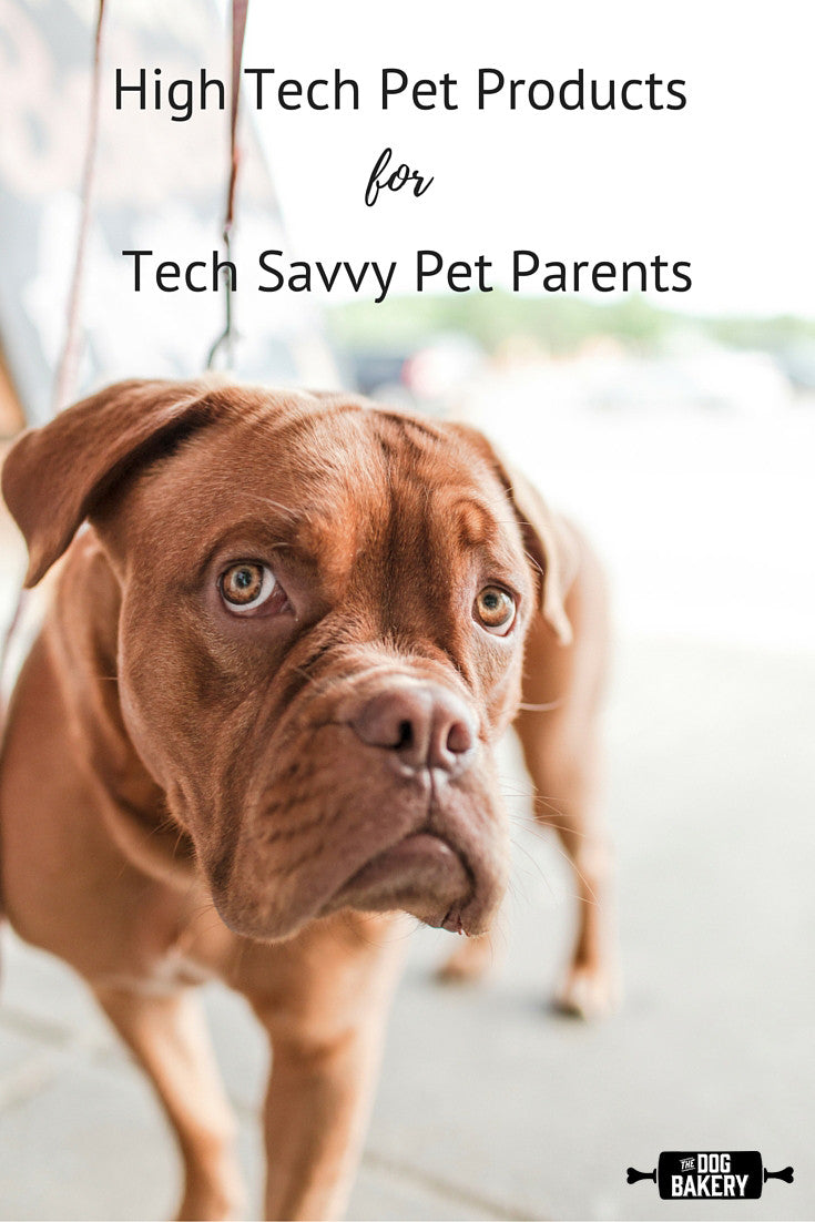 High Tech Pet Products