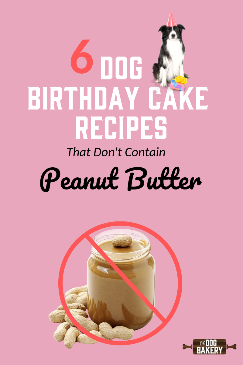 6 Dog Birthday Cake Recipes That Don't Include Peanut Butter