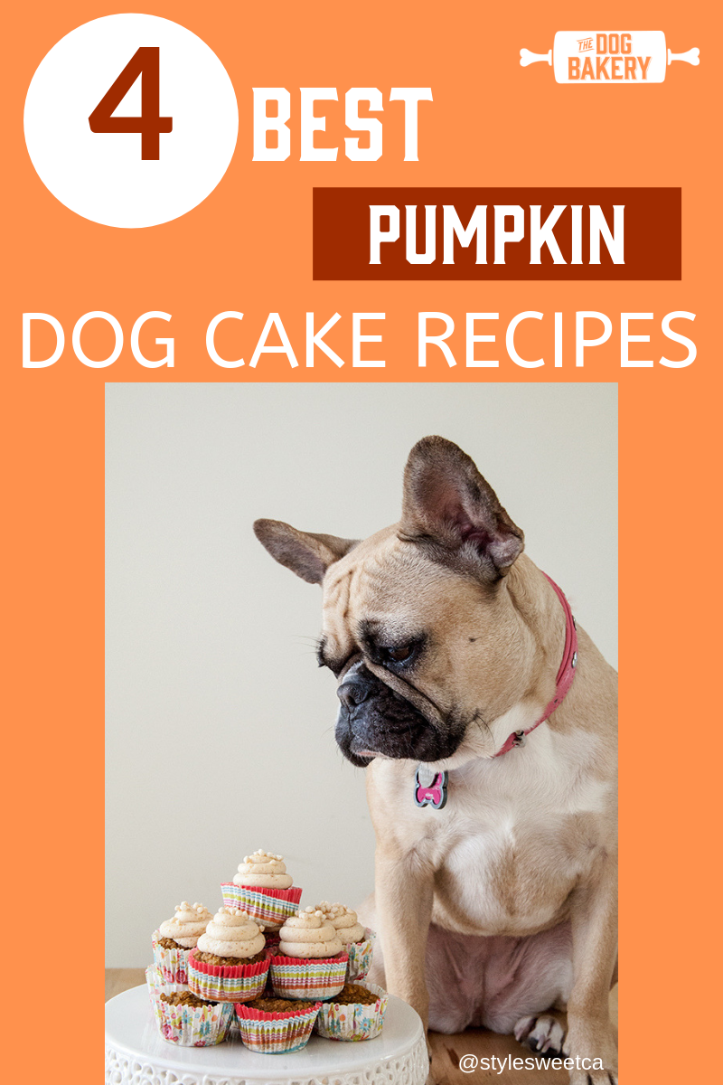 4 Best Pumpkin Dog Cake Recipes
