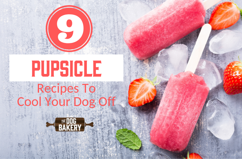 9 Yummy Pupsicle Recipes to Cool Your Dog Off