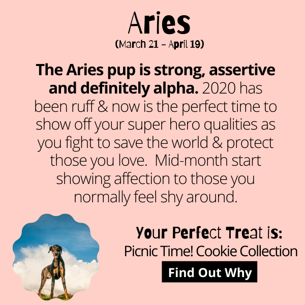 Aries Dog Horoscope July 2020