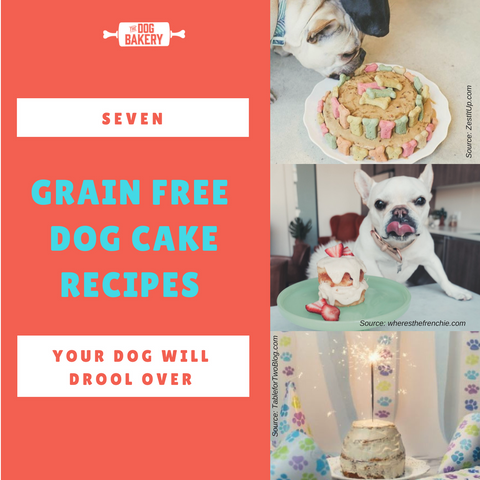 best grain free dog cake recipes your dog will love