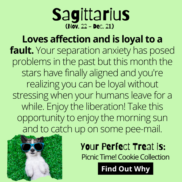 Loves affection and is loyal to a fault.Your separation anxiety has posed problems in the past but this month the stars have finally aligned and you're realizing you can be loyal without stressing when your humans leave for a while. Enjoy the liberation! Take this opportunity to enjoy the morning sun and to catch up on some pee-mail.