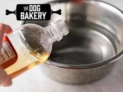 A Cure in Your Cabinet: Apple Cider Vinegar on Dogs – The