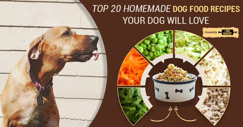 20 homemade dog food recipes your dog will love