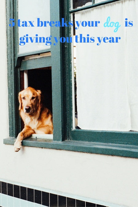 5 tax breaks your dog is giving you this year