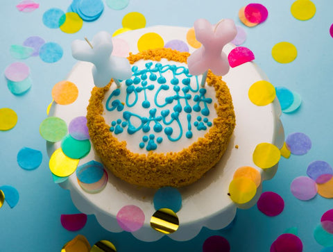 Outstanding 6 Dog Birthday Cake Recipes That Dont Include Peanut Butter The Funny Birthday Cards Online Chimdamsfinfo