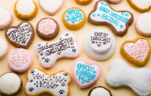 vegetarian cakes for dogs