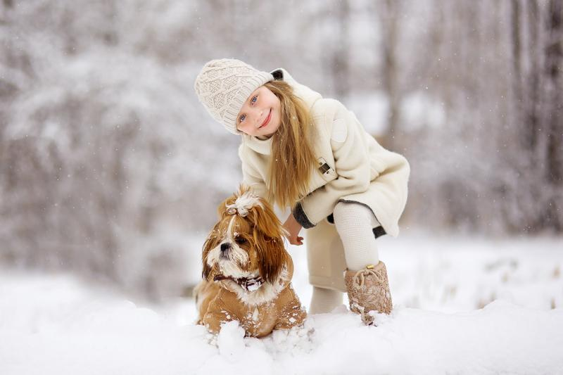 4 Ideas for Winter Dog Parties