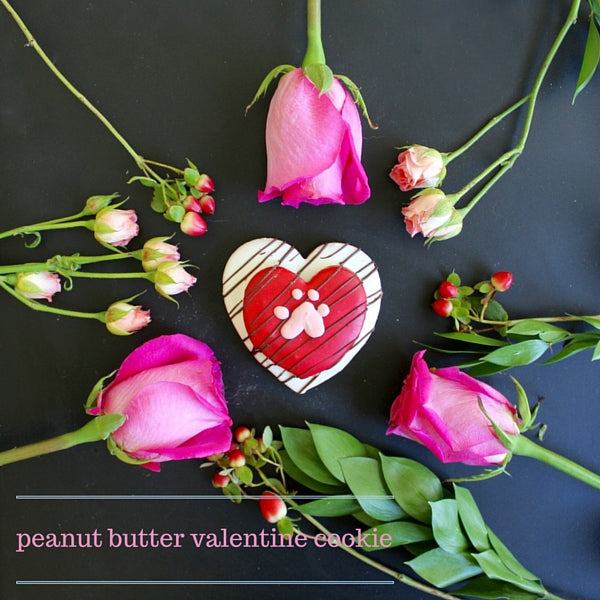 The Dog Bakery's peanut butter valentine cookie