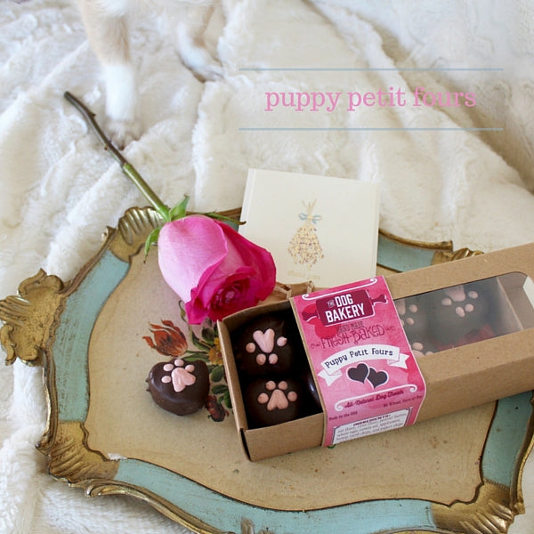 """The Dog Bakery's Puppy Petit Fours - a box of """"chocolates"""" made of dog friendly carob."""
