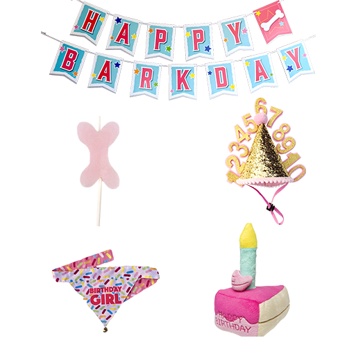 Doggie Birthday Accessory Package