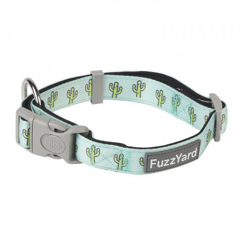 Tucson Dog Collar
