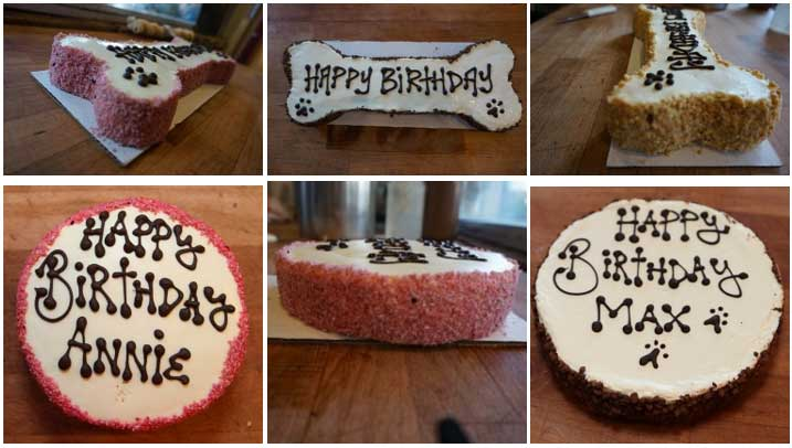 Order Birthday Cake For Dogs And Puppies From The Dog Bakery