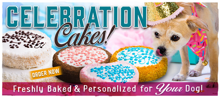 Order a cake – The Dog Bakery