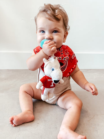 plush pacifiers and baby teeth