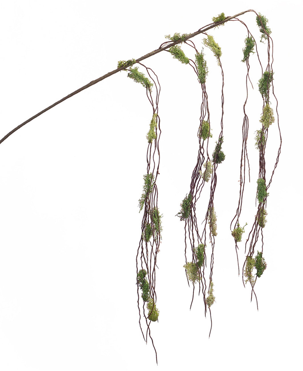 Moss Twig Hanging Branch 56