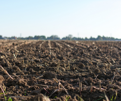 A Guide to Soil Health