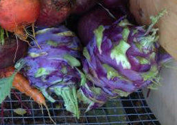 Uncommonly Good Vegetables
