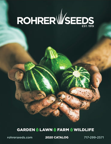 2020 Retail Seed Catalog