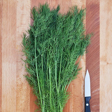 Dill, Greensleeves
