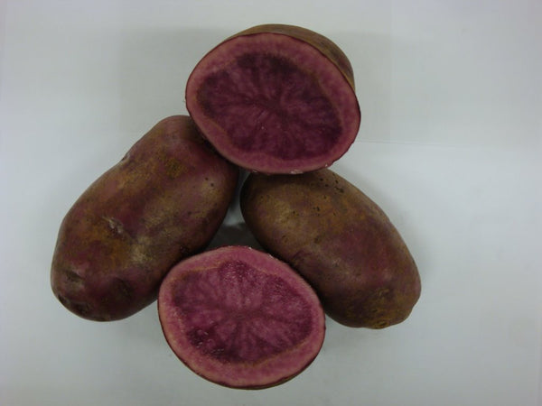 Adirondack Red Potatoes