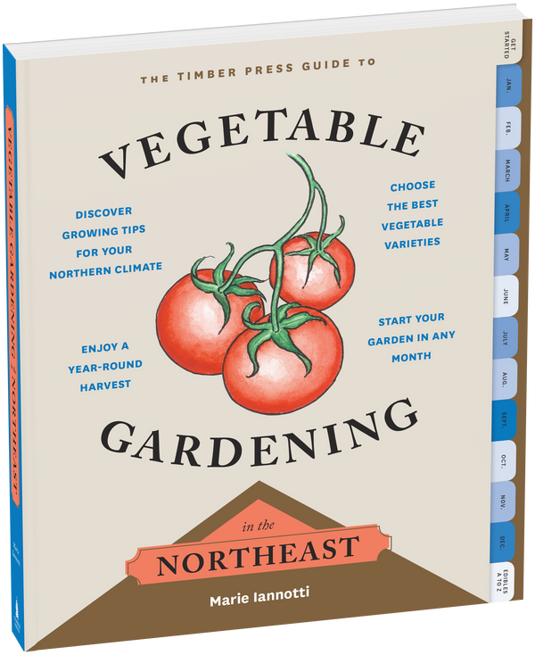 Guide to Vegetable Gardening in Northeast