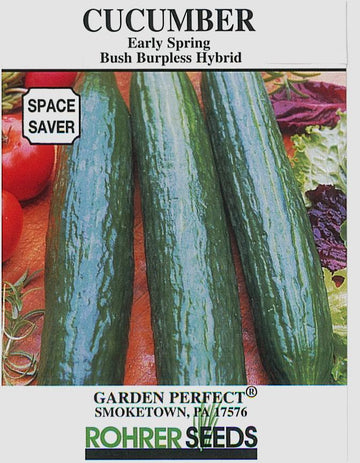 Early Spring Burpless Bush Cucumber