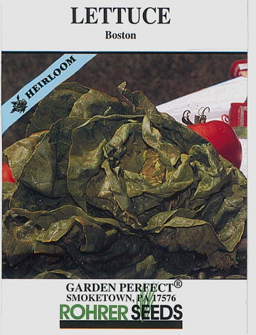 Boston Dark Green Lettuce