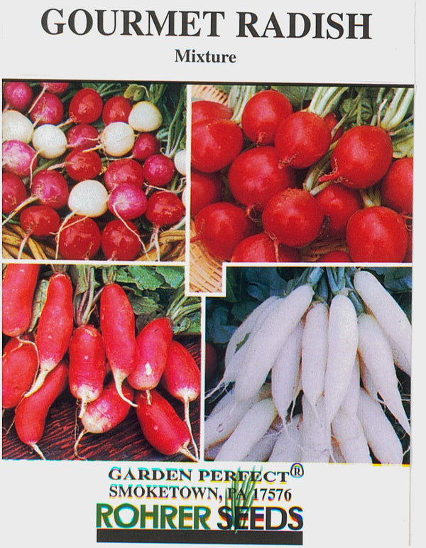 Radish Gourmet Mixture