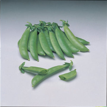 Sugar Sprint Snap Peas