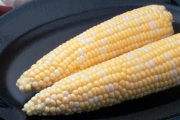 Untreated Ambrosia Sweet Corn