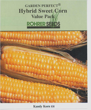 Kandy Korn E.h. Sweet Corn