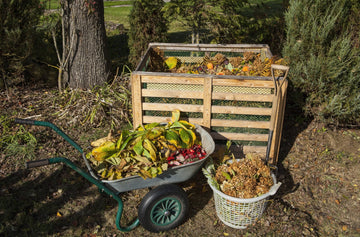 Composting & Soil Health for the Home Gardener
