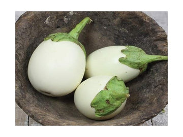 Japanese White Egg Eggplant