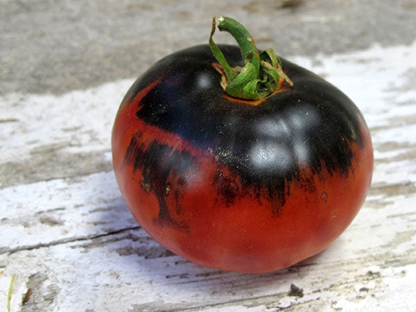 Indigo Apple Tomato