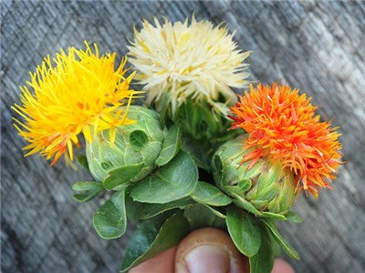 Safflower Grenade Mix