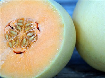Orangeflesh Honeydew Melon