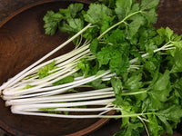 Chinese White Celery